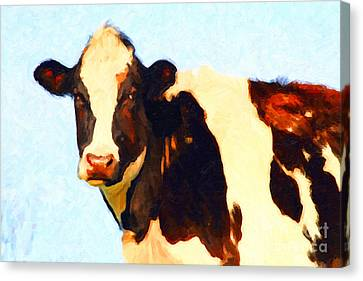 Milk Cow . Photoart Canvas Print by Wingsdomain Art and Photography
