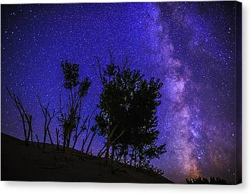 Milky Way And Silhouette Trees At Bruneau Dunes State Park Idaho Canvas Print by Vishwanath Bhat