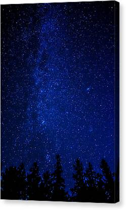 Milky Way And Trees Canvas Print by Pelo Blanco Photo