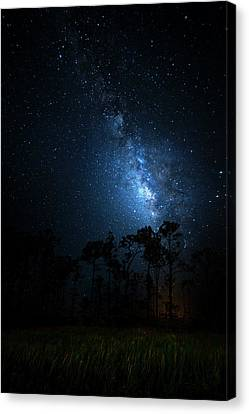 Canvas Print featuring the photograph Milky Way At Big Cypress National Preserve by Mark Andrew Thomas