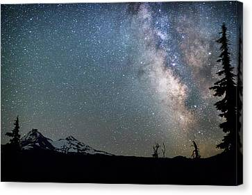 Canvas Print featuring the photograph Milky Way At Mckenzie Pass by Cat Connor