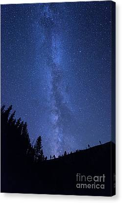 Milky Way Galaxy Canvas Print by Juli Scalzi