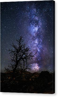 Milky Way Silhouette Canvas Print