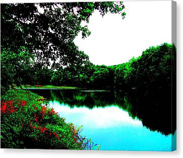 Mill Pond - Ashland Ma Canvas Print by Cliff Wilson