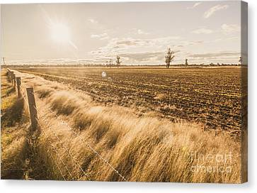 Millmerran Canvas Print by Jorgo Photography - Wall Art Gallery