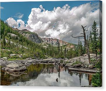 Mills Lake 5 Canvas Print