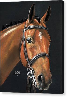 Jumping Horse Canvas Print - Miner - Bay Horse Portrait by Heather Gessell