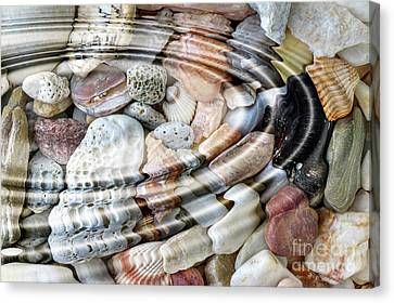 Canvas Print featuring the digital art Minerals And Shells by Michal Boubin