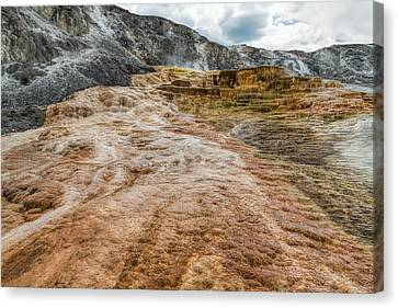 Canvas Print featuring the photograph Minerva Hot Springs Yellowstone by John M Bailey