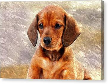 Mini Dachsund Dog Oil Painting Canvas Print