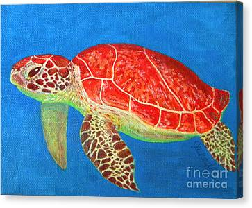 Mini Turtle Canvas Print