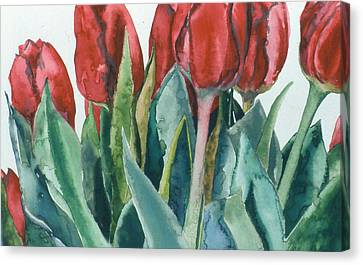 Mini-valentine Tulips - 2 Canvas Print by Caron Sloan Zuger