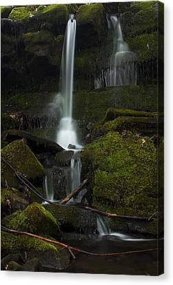 Mini Waterfall In The Forest Canvas Print by Jeff Severson