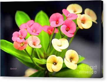 Italian Landscape Canvas Print - Miniature Flowers by Garland Johnson