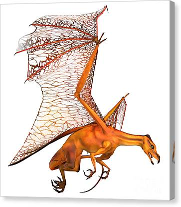 Miniature Golden Dragon Canvas Print