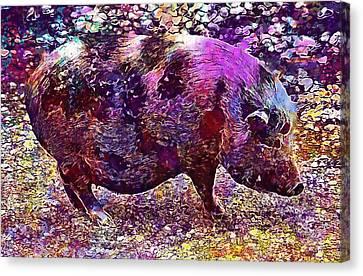 Canvas Print featuring the digital art Miniature Pig Pregnant Animal Pig  by PixBreak Art