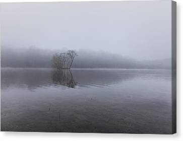 Minimal Reflection Canvas Print by Chris Fletcher