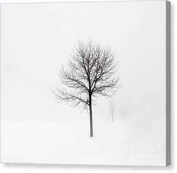 Minimum Visibility Canvas Print