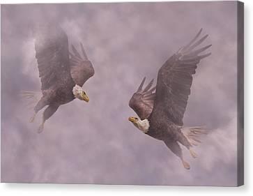 Mirror Eagles Canvas Print