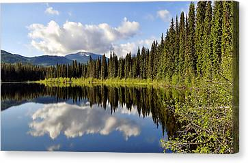 Canvas Print featuring the photograph Mirror Image by Blair Wainman