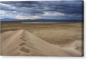 Mirror Mirror In The Desert Who Is The Smartest Of Them All Canvas Print