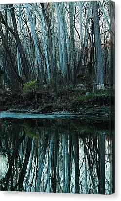 Mirrored Canvas Print by Bruce Patrick Smith