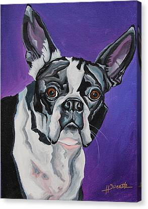 Boston Terrier Animals Acrylic Dog Portraits Pet Portraits Animal Portraits Canvas Print - Miss Oreo by Heather Sweatte