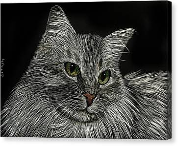 Miss Priss Canvas Print by Linda Hiller