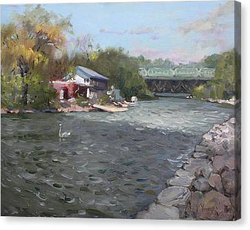 Port Credit Canvas Print - Mississauga Canoe Club by Ylli Haruni