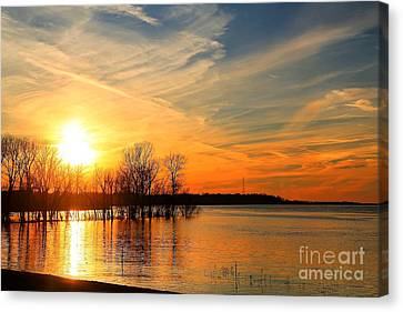 Mississippi River Flood 2016 Canvas Print by Billy Morris