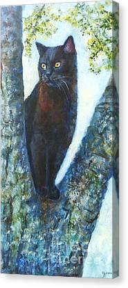 Missy In Tree Canvas Print by Jana Baker