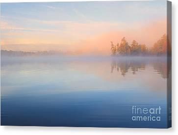 Mist At Dawn Canvas Print by Charline Xia