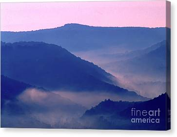 Mist In Williams River Valley  Canvas Print