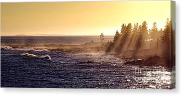 Mist Off The Coast Of Maine Canvas Print by Olivier Le Queinec