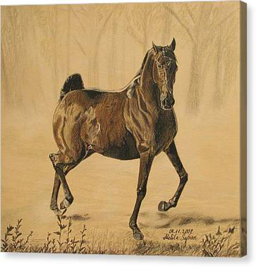Canvas Print featuring the drawing Mistical Horse by Melita Safran