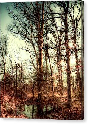 Mists Of Day Canvas Print by Michael Putnam
