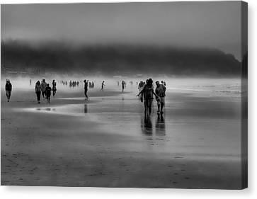 Misty Beach Canvas Print by David Patterson