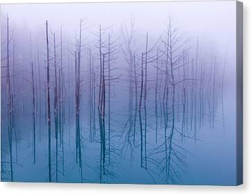Misty Blue Pond Canvas Print by Osamu Asami
