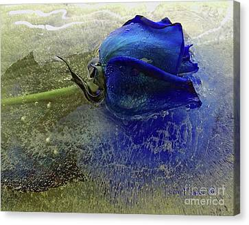 Misty Blue Canvas Print by Terry Foster