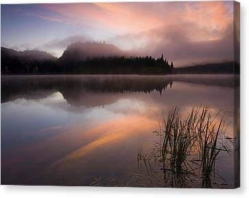 Misty Dawn Canvas Print by Mike  Dawson