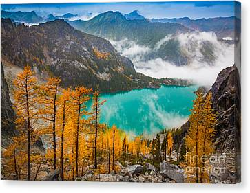 Misty Enchantments Canvas Print by Inge Johnsson