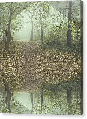 Misty Forest Canvas Print by Thubakabra