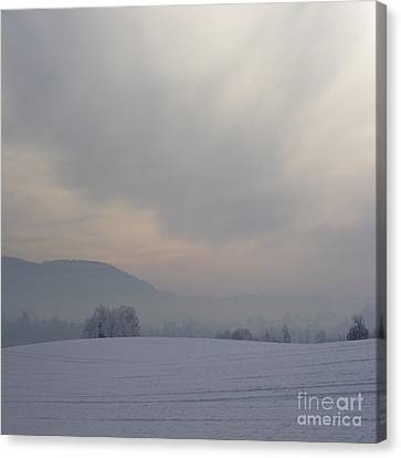 Misty Frosty Day Canvas Print by Angel  Tarantella