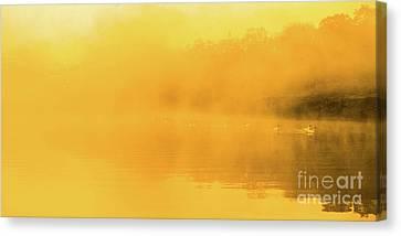 Misty Gold Canvas Print by Tatsuya Atarashi