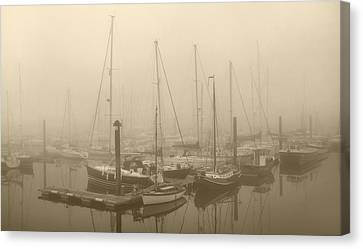 Misty Harbour Canvas Print by Terence Davis