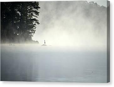 Misty Heron Canvas Print