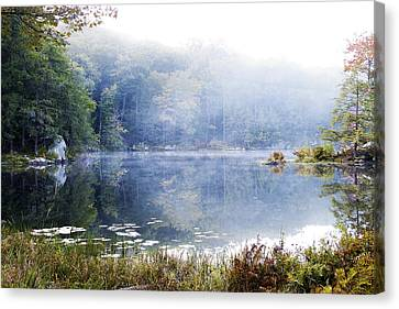 Misty Morning At John Burroughs #1 Canvas Print by Jeff Severson
