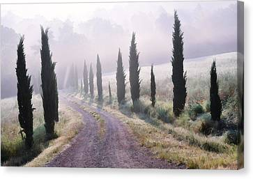Misty Morning In Tuscany Canvas Print