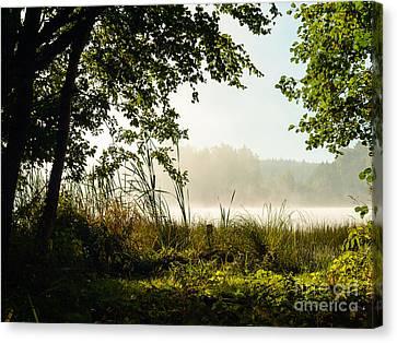 Misty Morning Light Canvas Print