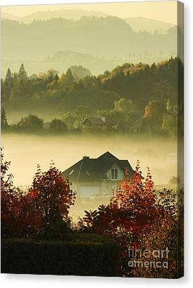Misty Morning			 Canvas Print by Mariola Bitner